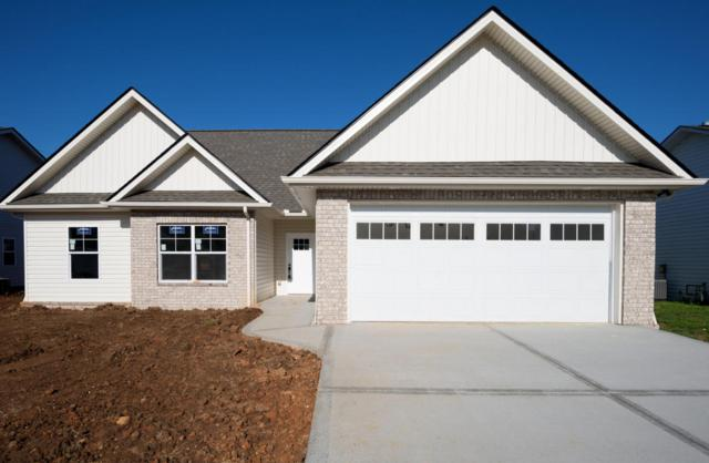 1914 River Poppy Rd, mascot, TN 37806 (#1030643) :: Shannon Foster Boline Group