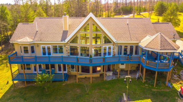133 Walnut Drive, Deer Lodge, TN 37726 (#1030762) :: Billy Houston Group