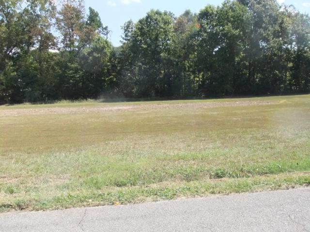Rockford Boyd Rd, Rockford, TN 37853 (#1031003) :: Billy Houston Group