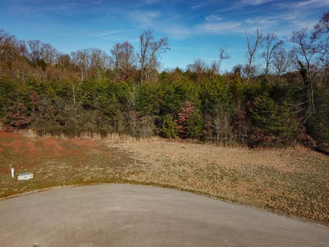 938 Shady Creek Rd, Maryville, TN 37801 (#1031065) :: Billy Houston Group