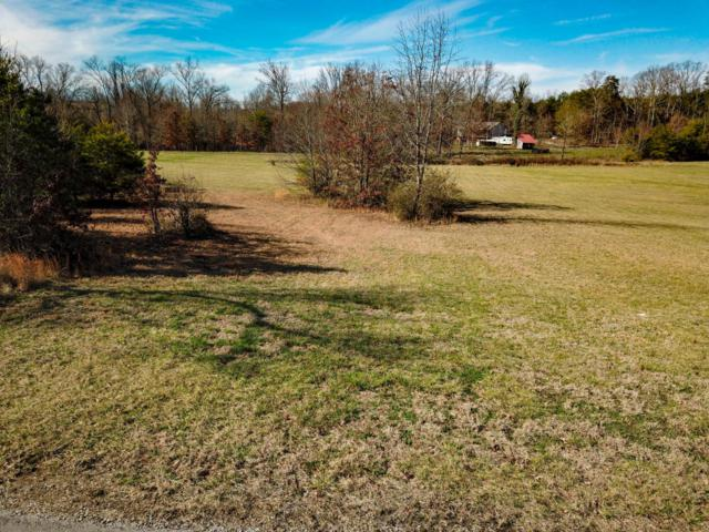 919 Shady Creek Rd, Maryville, TN 37801 (#1031068) :: Billy Houston Group