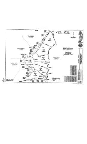 Long Rifle Rd, Walland, TN 37886 (#1031704) :: Billy Houston Group