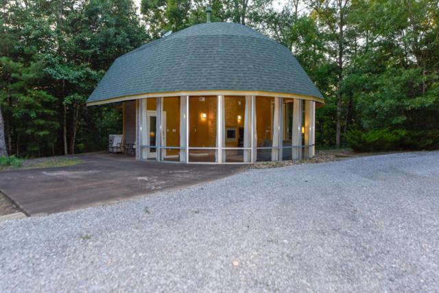 142 Gap Falls Lane, Maryville, TN 37803 (#1032096) :: Billy Houston Group