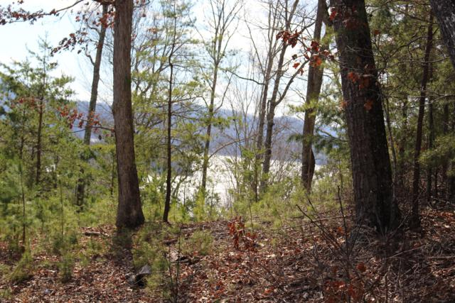 Lot 156 Lakeview Drive, Sharps Chapel, TN 37866 (#1032401) :: Shannon Foster Boline Group