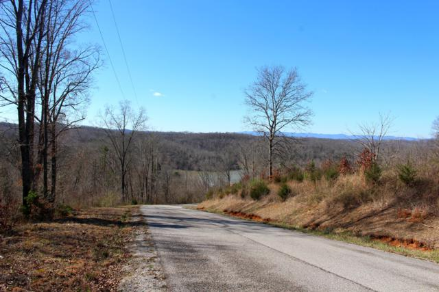 Lot 173 Saddleridge Drive, Speedwell, TN 37870 (#1032403) :: Billy Houston Group