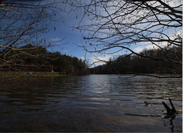 Lot 6 Yellow Nugget Rd., Tellico Plains, TN 37385 (#1033213) :: Billy Houston Group