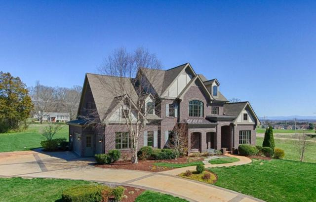 819 Hammock Lane, Knoxville, TN 37934 (#1033333) :: Billy Houston Group