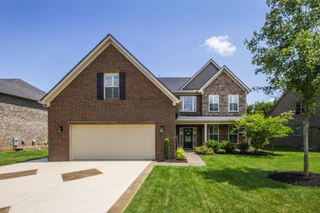 12240 Patagonia Lane, Knoxville, TN 37922 (#1033623) :: Shannon Foster Boline Group