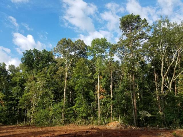 Parkbrook (Lot 60) Drive, Friendsville, TN 37737 (#1034324) :: Billy Houston Group