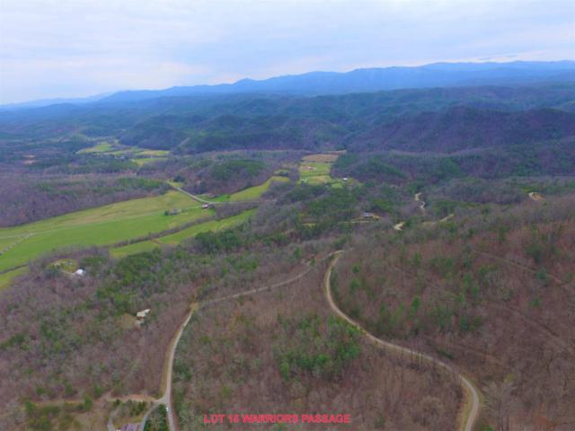 L15 Warriors Passage Drive, Tellico Plains, TN 37385 (#1034387) :: Shannon Foster Boline Group
