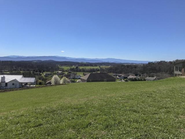 Scenic View Drive, Talbott, TN 37877 (#1034412) :: Billy Houston Group