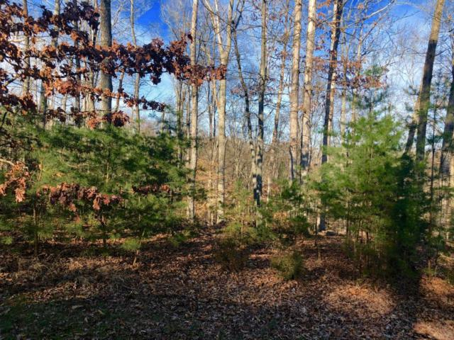 Lot 15 Waterstone Drive, Dandridge, TN 37725 (#1034438) :: Realty Executives Associates