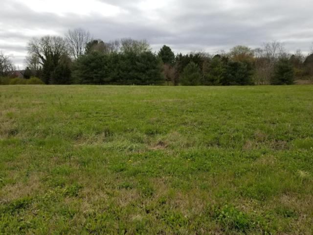 Lot 6 Stone Leigh Drive, New Market, TN 37820 (#1035102) :: Billy Houston Group