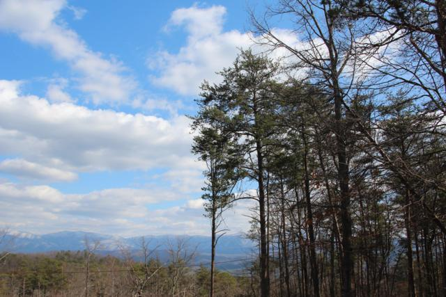 Lot 89 S Compton South Drive, Tallassee, TN 37878 (#1035203) :: Billy Houston Group
