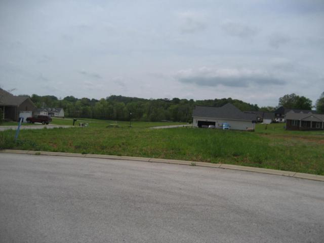 Ashton Lane, Madisonville, TN 37354 (#1035434) :: Shannon Foster Boline Group