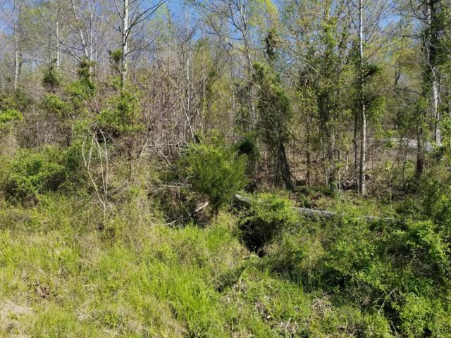 Lot 532 Whistle, New Tazewell, TN 37825 (#1035498) :: Billy Houston Group
