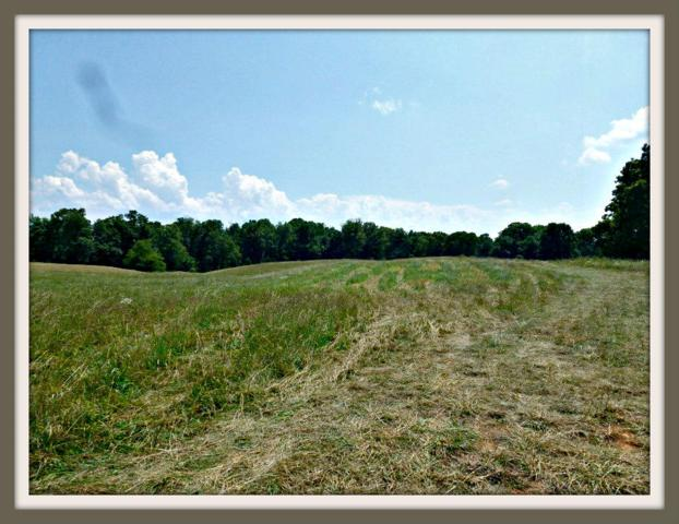 Lot 9 Burchfield Rd, Dandridge, TN 37725 (#1035645) :: Billy Houston Group