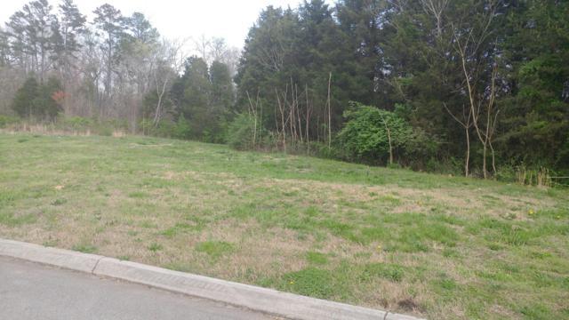 12166 Fredericksburg Blvd, Knoxville, TN 37922 (#1036217) :: Billy Houston Group