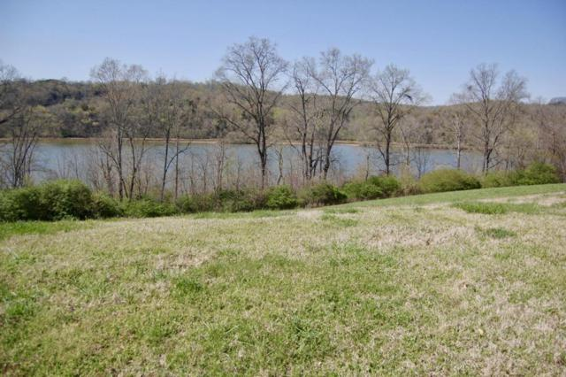 379 River Bank Tr, Loudon, TN 37774 (#1036346) :: Shannon Foster Boline Group