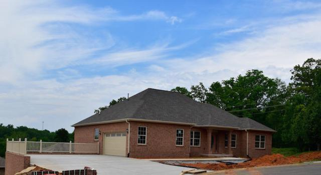 1825 Placid Drive, Sevierville, TN 37862 (#1036500) :: Billy Houston Group