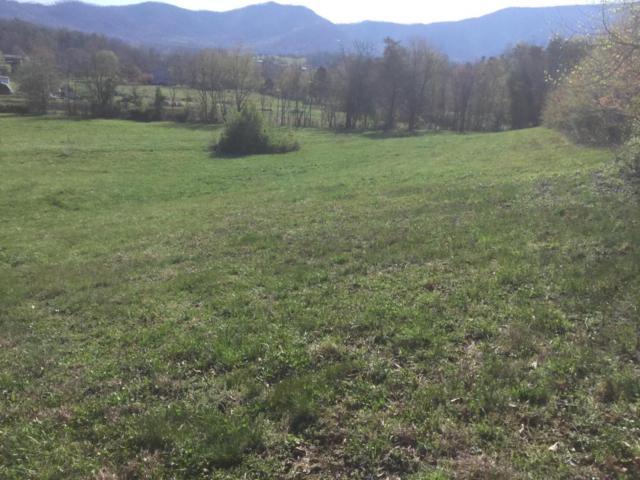 Hatcher Mountain Way Off  2C, Sevierville, TN 37862 (#1036563) :: Billy Houston Group