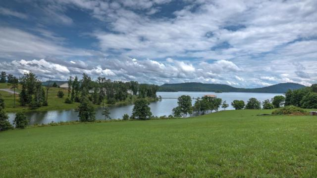 Lot 15 Blount Circle, Rutledge, TN 37861 (#1036953) :: Billy Houston Group