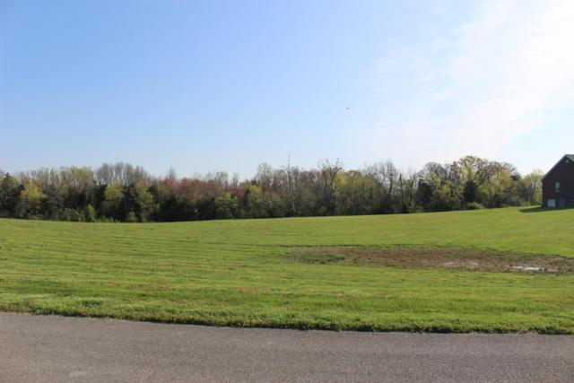 Brigantine Circle, Louisville, TN 37777 (#1037022) :: Billy Houston Group