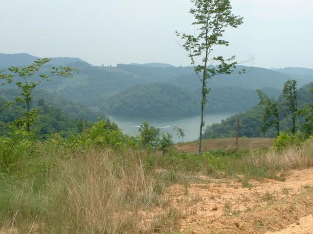 Whistle Valley Rd, New Tazewell, TN 37824 (#1037211) :: Billy Houston Group