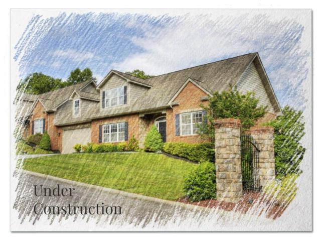 4241 Platinum Drive, Knoxville, TN 37938 (#1037398) :: Billy Houston Group