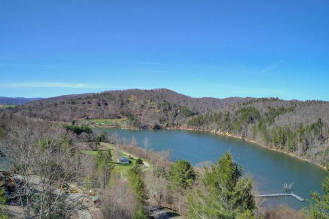 Lot 6 Riverview Court, Butler, TN 37640 (#1037754) :: Billy Houston Group