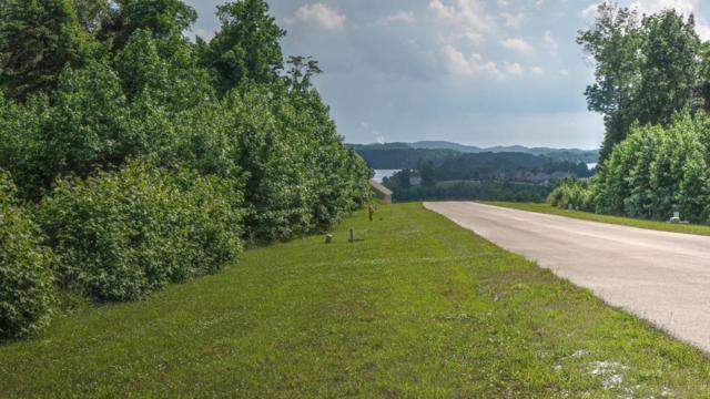 Lot 334 Waterview Drive, Rockwood, TN 37854 (#1038053) :: Shannon Foster Boline Group
