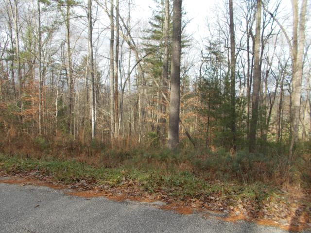 Lot 24 Hanning Drive, Fairfield Glade, TN 38558 (#1038326) :: Billy Houston Group