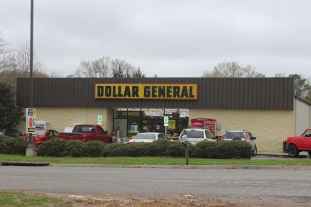 103 Whitewater Drive, Ocoee, TN 37361 (#1038356) :: Billy Houston Group