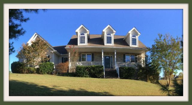 3549 Mountain View Lane, White Pine, TN 37890 (#1038456) :: Billy Houston Group
