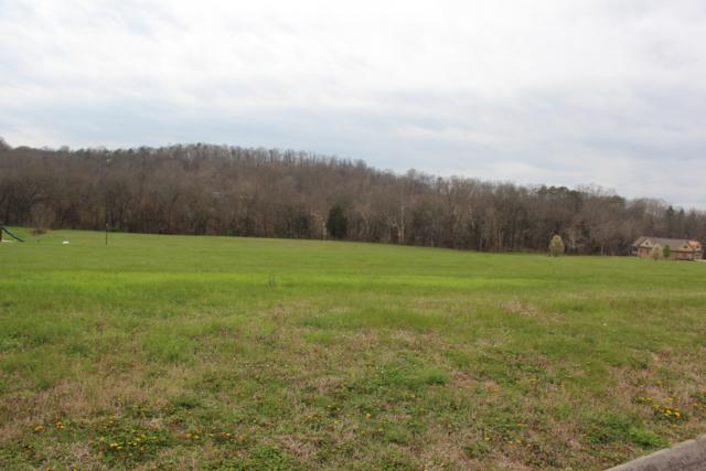 2016 River Mist Circle, New Market, TN 37820 (#1038806) :: Billy Houston Group