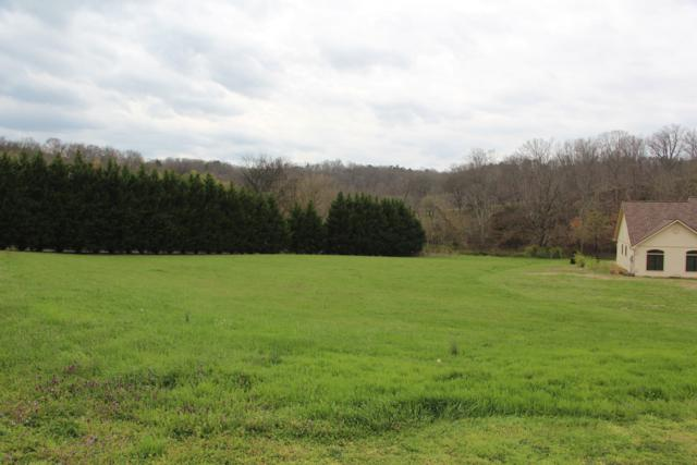 1915 River Mist Circle, New Market, TN 37820 (#1038807) :: Billy Houston Group