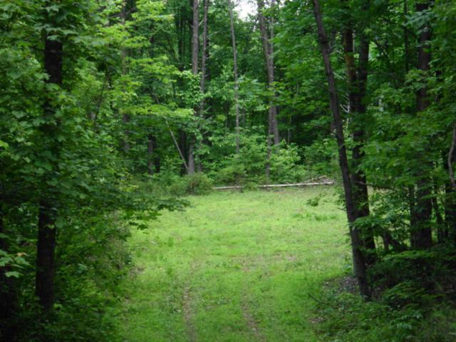 Cherokee Winds Drive, Tellico Plains, TN 37385 (#1038845) :: Billy Houston Group