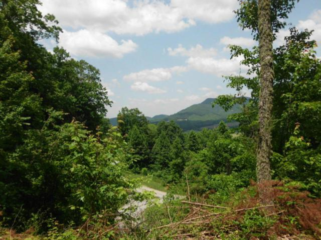 Cherokee Winds Drive, Tellico Plains, TN 37385 (#1038846) :: Billy Houston Group