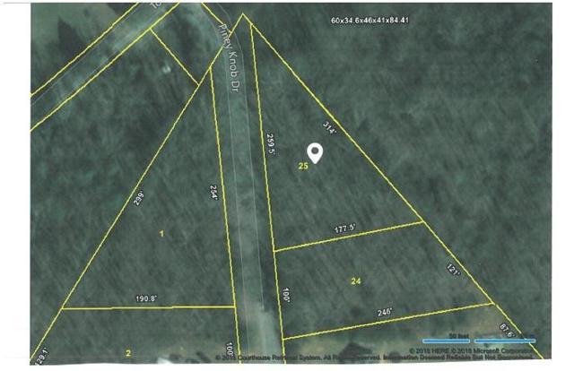 Lot 25 Piney Knob Drive, Spring City, TN 37381 (#1038979) :: Billy Houston Group