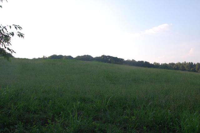 Lot #6 Happy Acres, Rutledge, TN 37861 (#1039113) :: Billy Houston Group