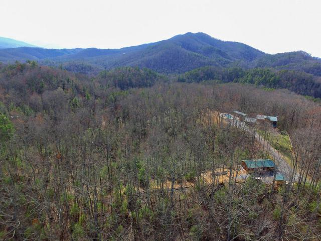 E Balls Hollow Rd, Cosby, TN 37722 (#1039144) :: Billy Houston Group