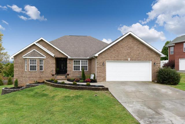 1346 Meadside Drive, Maryville, TN 37804 (#1039436) :: Billy Houston Group