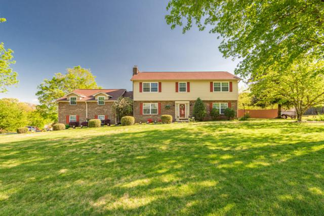 1701 Dawn Redwood Tr, Knoxville, TN 37922 (#1039481) :: Billy Houston Group