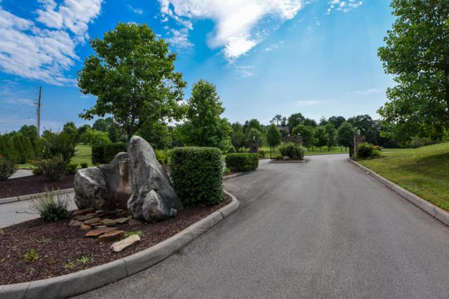 1420 Chickadee Circle, Maryville, TN 37801 (#1039733) :: Shannon Foster Boline Group