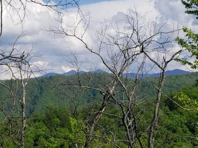Lot 22 Mountain Dreams Way, Sevierville, TN 37876 (#1040592) :: Billy Houston Group