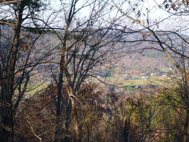 High Ridge Way, Sevierville, TN 37862 (#1040860) :: Billy Houston Group