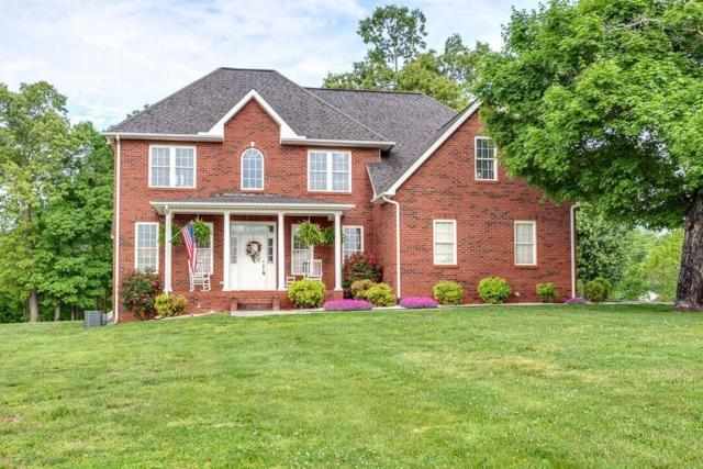 390 Chadwick Way, Blaine, TN 37709 (#1040878) :: Billy Houston Group