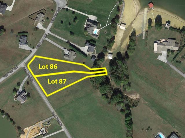 Duck Pond Drive, Dandridge, TN 37725 (#1040882) :: Shannon Foster Boline Group