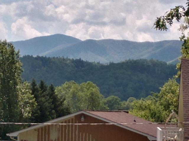Lot 22 Wears Drive, Sevierville, TN 37862 (#1041056) :: Shannon Foster Boline Group
