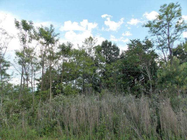 Eagle Ridge Point, Philadelphia, TN 37846 (#1041075) :: Shannon Foster Boline Group